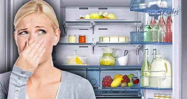 Buzdolabı Koku sorunları?